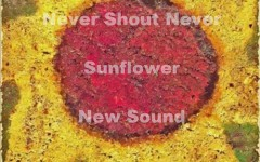 'Sunflower' blooms with sweet music but uneven lyrics