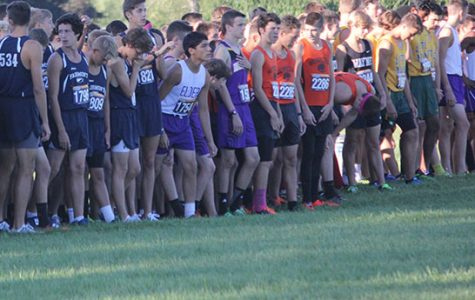 Cross Country continues successful season