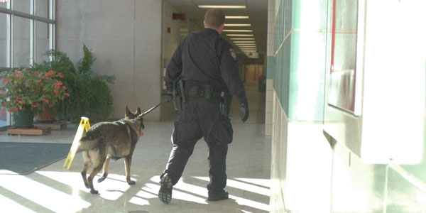 Drug dogs sniff lockers and cars; one incident reported