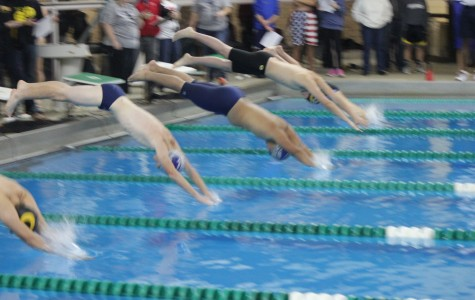 Two Firebird swimmers begin their race after diving intensely off the block.