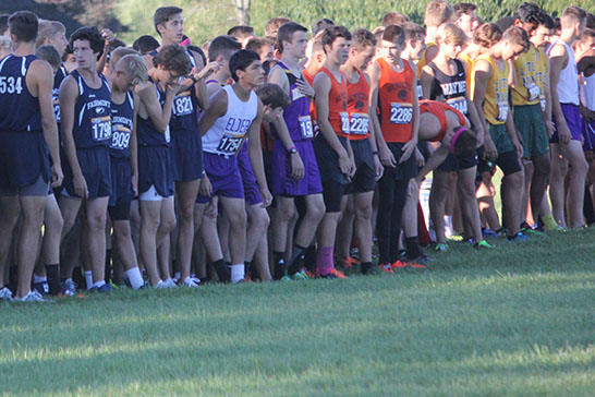 The Fairmont boys' cross country team getting ready for the race.