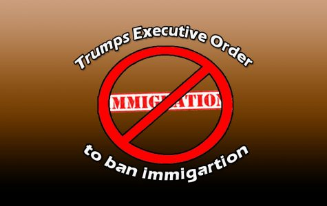 Donald Trump's immigration ban