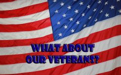 Veterans Day is a day to honor those who have served their country. While it falls on a Saturday this year, in most years it is during the week and schools are in session.