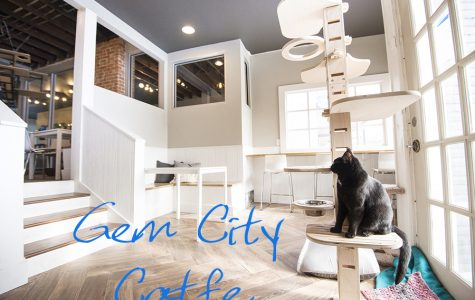 April Local Gem of the Month: Gem City Catfe